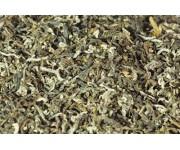 Китайский чай в подарочной упаковке би ло чунь (изумрудные спирали весны)