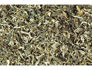 Зелёный чай Дунтин Би Ло Чунь